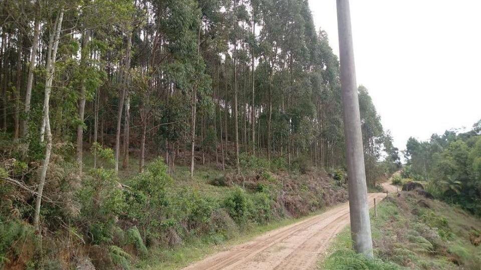 Terreno Rural em Braço do Norte